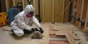 Water Damage Restoration And Mold Removal In Process