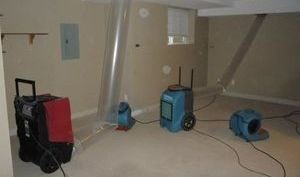 Water Damage and Mold Cleanup In Game Room